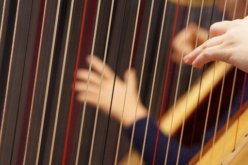 Musical Instrument, Harp, Concert Harp