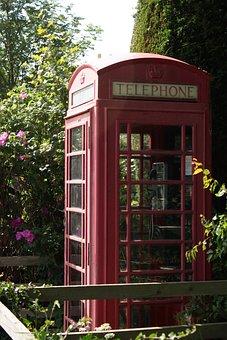 Phone, Scotland, Nature, Uk, Summer, Shrubs, Overgrown