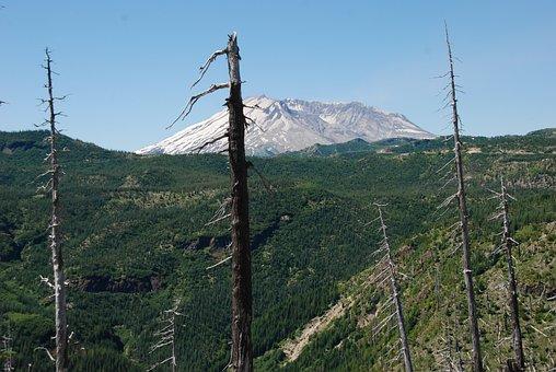 America, Washington State, Mount Saint Helens, Volcano