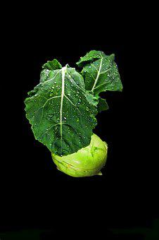 Food, Vegetables, Eat, Kohlrabi, Fresh, Healthy
