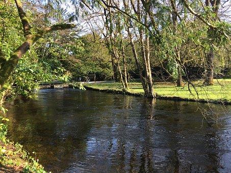 Cong, Ireland, Holiday, Green, Nature, Landscape, Park