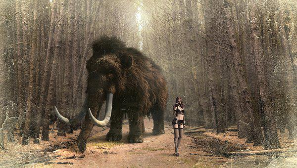 Fantasy, Mammoth, Woman, Forest, Trees, Composing