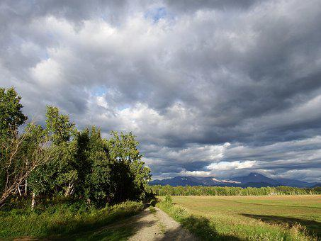 Field, Forest, Clouds, Bad Weather, Rain, Road, Nature