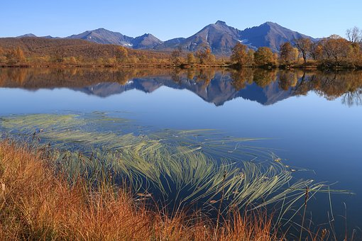 Autumn, Lake, Mountains, Reflection, Weed, Forest