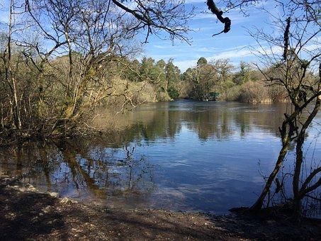 Lake, Ashford, Water, Ireland, Nature, Costa, Sky