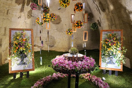 Roses, Exhibition, Cave, Garden, Flowers