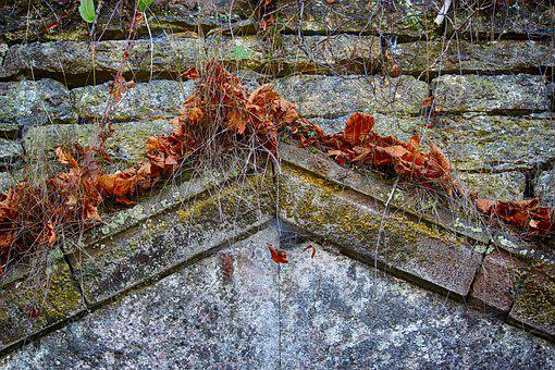 Grotto, Stones, Ledge, Stone First, Torspitze, Leaves