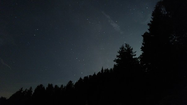 Night, Sky, Stars, Forest, Nature, France, High-loire