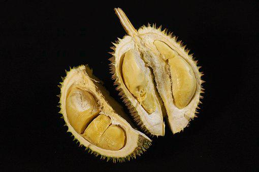 Durian Fruit, King Of Fruits, Tropical, Delicious