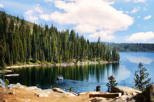 Landscape, Grand Tetons, Lake, Mountain, Pines