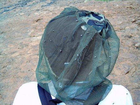 Animal, Fly, Nuisance, Hair Net, Protection, Bug, Pests