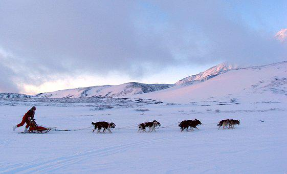 Volcano, The Foot, Dog Sled, Mountains, Landscape