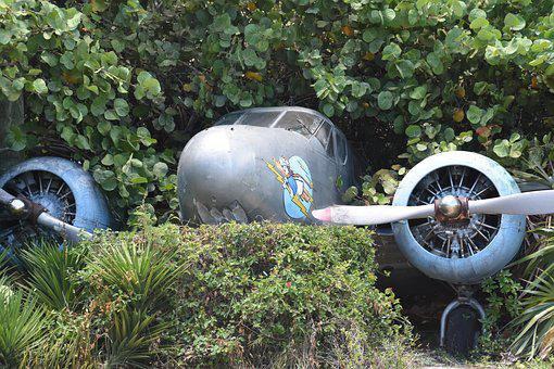Jungle, Plane, Crash, War, Landscape, Forest, Airplane