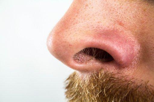 Nose, Nostrils, Nose Hairs, Blackheads, Bart