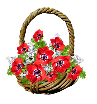 Basket, Anemone, Red Flowers, Gift