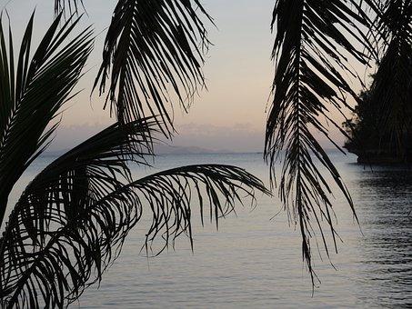 Ocean, Paradise, Summer, Sunset, Relax, Sea