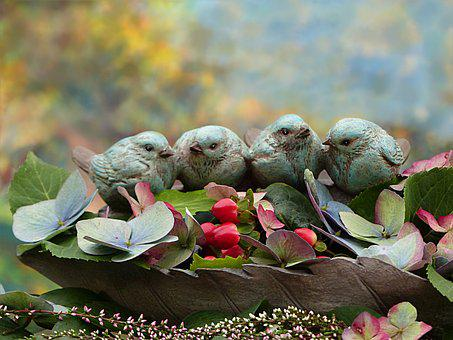 Still Life, Autumn, Birds, Flock Of Birds, Decoration