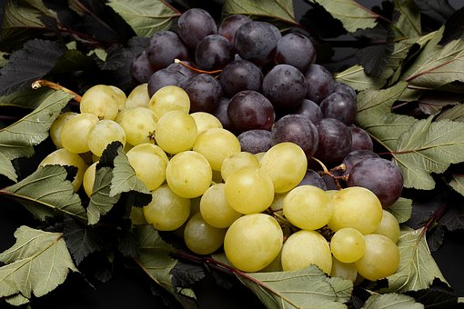 Grapes, Fruits, Fruit, Nature, Blue, Green, Leaves, Eat