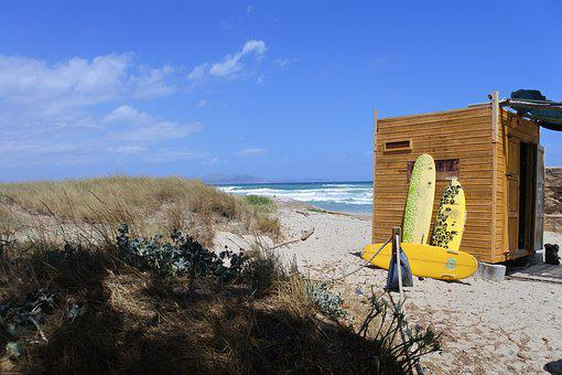 Beach, Surfboard, Summer, Surf, Holiday, Sea, Water