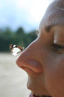 Butterfly, Nose, Nature, Happiness