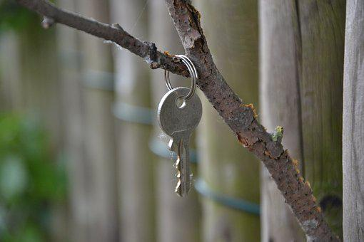 Key, Branch, Fence, Nature, Plant