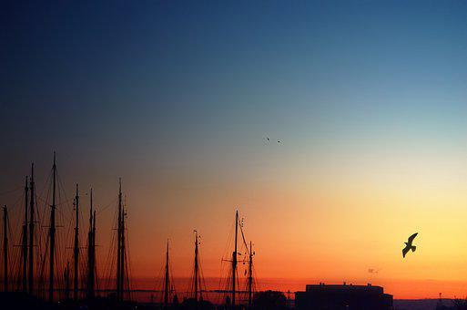 Morning, Sky, Amsterdam, Harbor, Day, Nature, Landscape