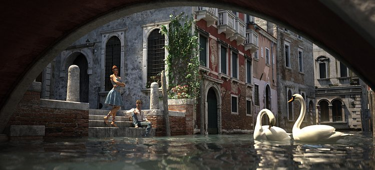 Venice, Swans, Reflections, Channel, In Love, Romantic