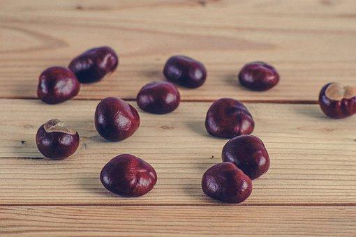 Chestnuts, Autumn, Boards