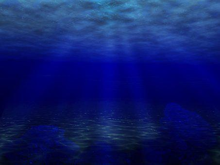 Underwater, Sea, Ocean, Water, Fish, Diving