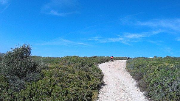 Mtb, Trail, Adventure, Bike, Mountain, Nature, Biking