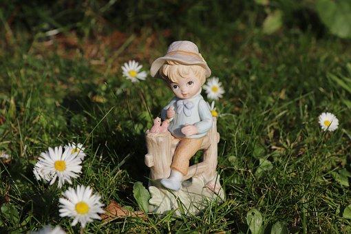 Boy, Child, Fence, Nature, Daisy, Grass