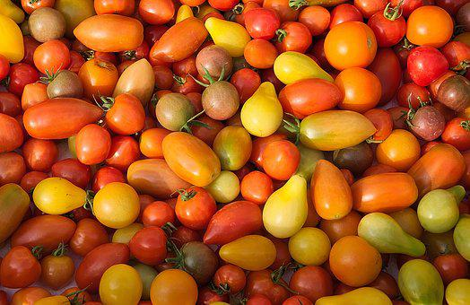 Red Tomatoes, Yellow Tomatoes, Round Tomatoes
