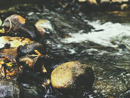 River, Forest, Water, Rust, Iron, Nail, Rocks, Wood