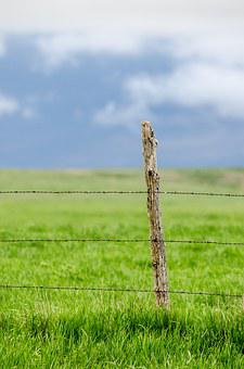 Fence Post, Barbed Wire, Pasture, Green, Blue Sky, Blue
