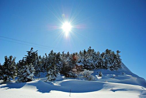 Snowy Landscape, Snow, Winter, Landscape, Cold, White