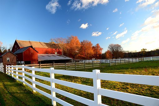 Barn, Fence, Rural, Farm, Agriculture, Wood, Red