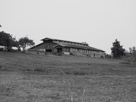 Barn, Farm, Monochrome, Rural, Field, Countryside