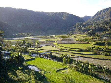 Rice Fields, Mountains, Agricultural, Countryside