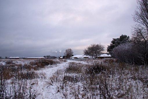Winter Landscape, Snow, Winter, Eng, Denmark, White