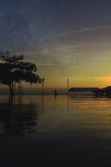 Stars, Water, Tree, Silhouette, Sunset, Reflection, Man