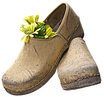 Clogs, Shoes, Garden Shoe, Fabric Flower, Decoration