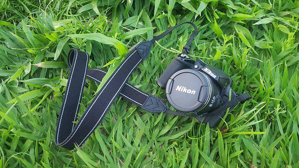 Camera, Nikon, Grass, Green, Lawn, Summer, Nature