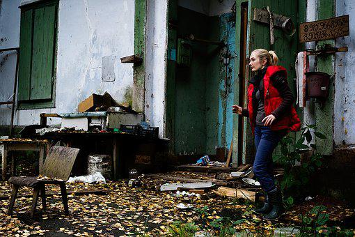 Girl, Cinema, Angry Dog, Camp, Building, Forest, Horror