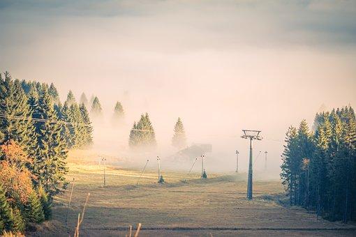 Fog, Clouds, Trees, Cableway, Light, Landscape, Nature