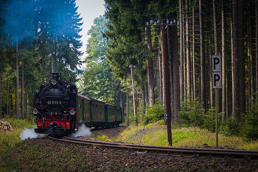 Locomotive, Train, Machine, Forest, Track