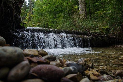 Waterfall, Pflätschern, Bach, Stones, Murmur, Nature