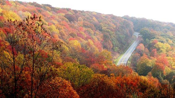 Mountain, Fall, Autumn, Travel, North Carolina