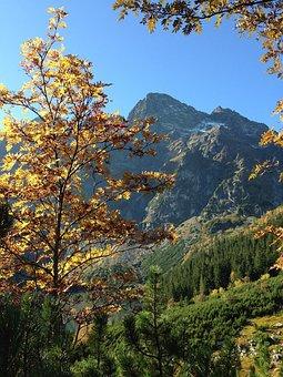 Mountains, Tatry, Autumn, The High Tatras, Landscape