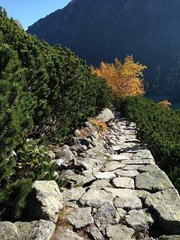 Mountains, Tatry, Trail, The High Tatras, Landscape