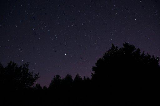 Night, Sky, Stars, Ursa Major, Space, Night Sky Stars